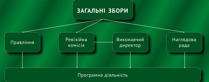 Cтруктура